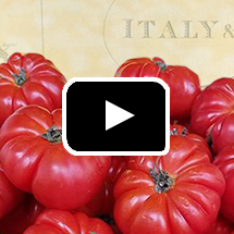 Ripe red tomatoes with text Italy in background, play button in foreground