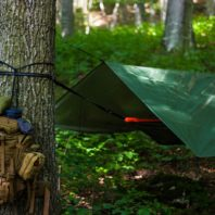 Photo: Green tent set up in green leafy forest.