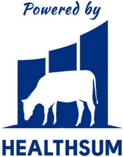 Healthsum logo