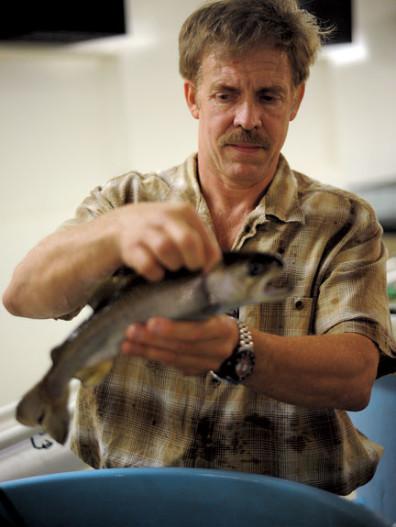 John Stark, photo courtesy of Washington State Magazine