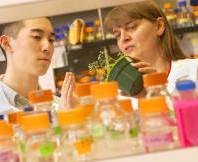 Associate_Professor_Mechthild_Tegeder_with_Biological_Sciences_student_SBS