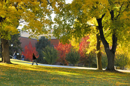 fall_color_on_campus