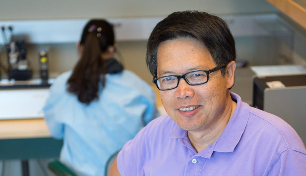 Yuehe Lin, professor in the School of Mechanical and Materials Engineering and the Paul G. Allen School for Global Animal Health