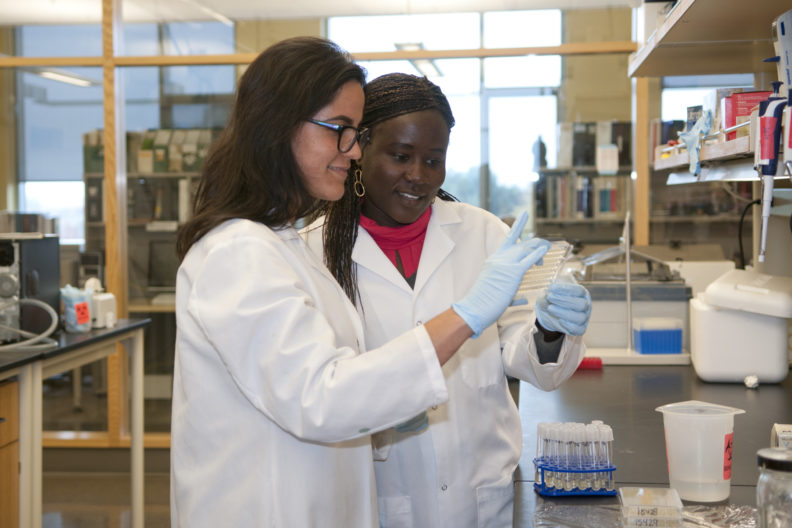 WSU researchers use analytics to improve understanding of microbial resistance.