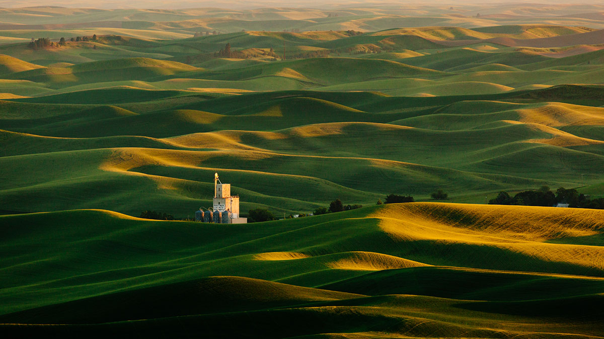 Palouse landscape with green hills and a grainery.
