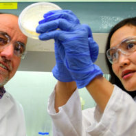 Two scientists look at a bacterial culture.