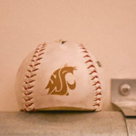 A detailed cougar baseball.
