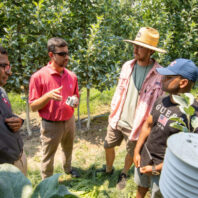 Researchers discussing agricultural AI near apple trees.