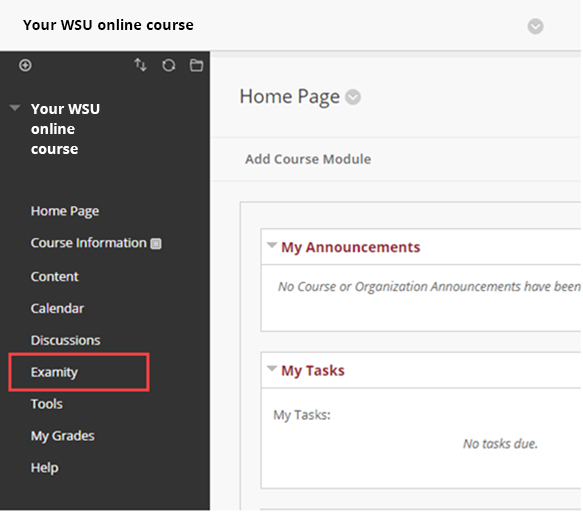 screenshot: Your online course, examity menu item outlined in red
