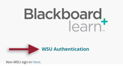Screenshot: Blackboard Learn log in screen with red arrow pointing to text WSU Authentication.