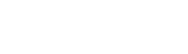 Logo: WSU Professional Education.