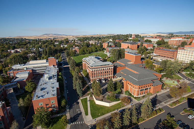 Image of the Pullman Campus taken from above.