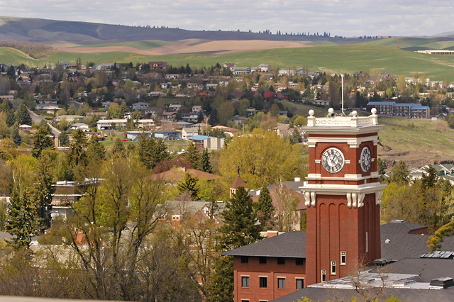 Image of Pullman, Washington, from the WSU Pullman campus.