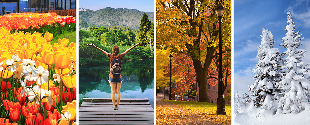 A panel of four photos: Spring: Closeup of red and yellow tulips; Summer: Back view of person standing on a dock in a lake, with green trees and mountains in the background; Autumn: Orange and yellow leaves on the trees and coating the ground; Winter; Pine trees covered in snow.