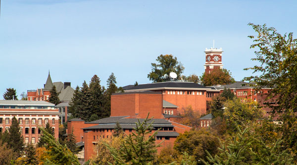 Picture of WSU Pullman campus on a sunny day
