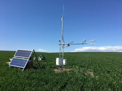 Carbon and Water Dynamics Field Study.