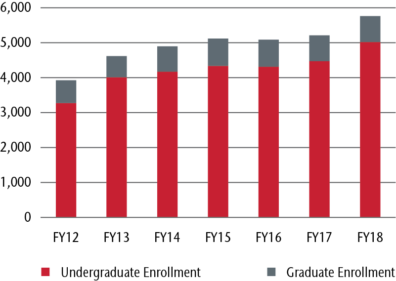 bar graph displaying graduate and undergraduate from 2012-2018.
