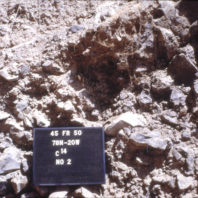 Roald Fryxell collected burned material for radiocarbon dating. This photo shows sample number 2, taken from a wall profile outside the rockshelter in July 1968