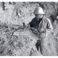 Roald Fryxell is standing inside an excavation unit, examining the soil and takiing notes.