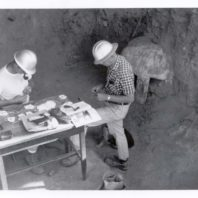 Archaeologists Richard Daugherty and Roald Fryxell examine a table containing artifacts inside the Marmes Rockshelter in 1962