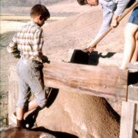 Screening dirt outside the Marmes Rockshelter, August 1962