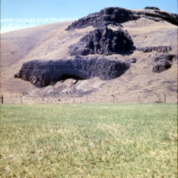 A long view from the floodplain, showing the opening of the rockshelter, the backdirt piles in front of the opening, and the basalt cliffs above; August 1962.