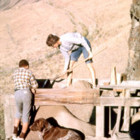 A woman screens dirt outside the Marmes Rockshelter in August of 1962 while a boy and a dog look on