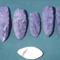Six stone tools from the rockshelter are shown here. Five are roughly chipped basalt bifaces which were probably meant to be made into projectile points; one is a light-colored, leaf-shaped chert biface; August 1962.