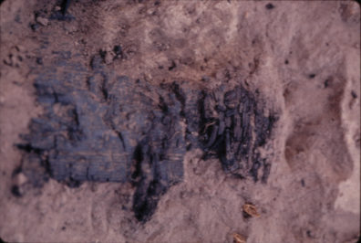 Burned mat and pole in Housepit 5 104.63N 139.22E 99.21cm, August 1970