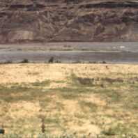 A view of the site from the hill before excavation, 1969