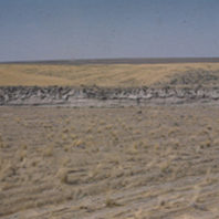 View of the coulee wall south of the site 1951