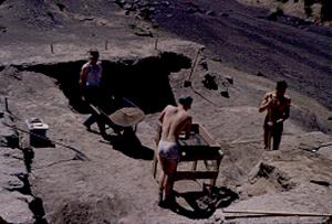 Excavators at work 1952