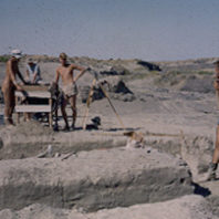 Excavation in progress 1951
