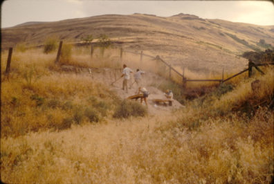 Initial exposure at Area C; view to the northeast shows gully, August 1967