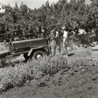 Using core driller to sample stratigraphy, June 1967