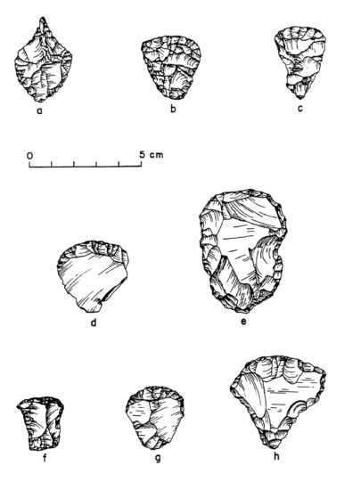 Drill and end scrapers from Squirt Cave (45WW25): a) drill; b and c) bifacially flaked triangular end scrapers; d and e) unifacially flaked end scrapers; f-h) unifacially flaked, shouldered end scrapers (source: Endacott 1992: 69-71; Figure 16; illustration by Sarah Moore).
