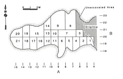 Planview of Squirt Cave (45WW25) showing excavation units (source: Endacott 1992:33, Figure 5).