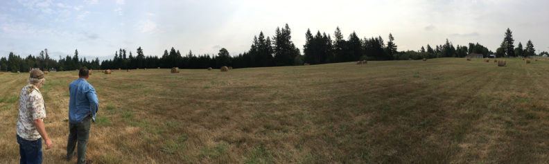 Meyer's Point Property Panoramic