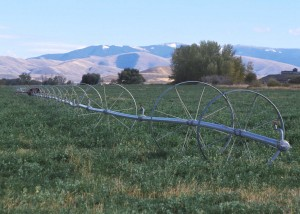 Wheel line irrigation system (courtesy USDA)