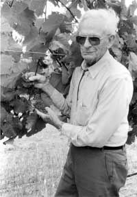 Photo source https://cahnrs.wsu.edu/blog/2007/04/a-brief-history-of-washington-wine-walter-clore-washington-wine-history-part-1/