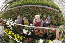 WSU undergraduate environmental horticulture majors