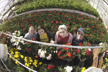 Students in the old Wilson Road greenhouse, soon to be replaced with a display garden