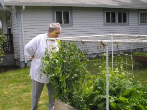 Rebecca Branderhorst of Longview, Wash., inspects her vegetable garden. Photo courtesy of Gary Fredricks.