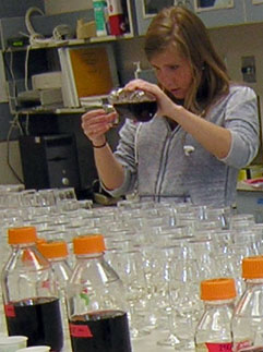 Allison Baker at work in a wine sensory lab at WSU.