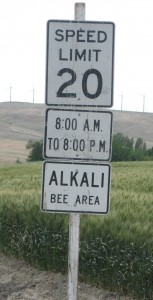 Alkali bees are an important asset to alfalfa seed growers in central Washington, as evidenced by these signs. Photos courtesy of Amber Vinchesi. Click image for a high-resolution version.