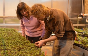 WSU vegetable horticulture scientist Carol Miles (left) and graduate student Jesse Wimer (right) will share the results of their latests research in China next month. Photo by Kim Binczewski, WSU.
