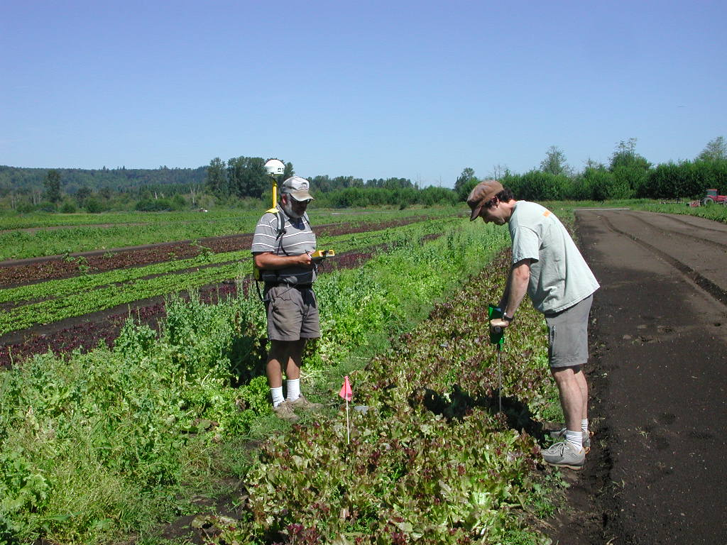 A decade of organic farming research for long term solutions college of agricultural human - Profitable crops small plots ...