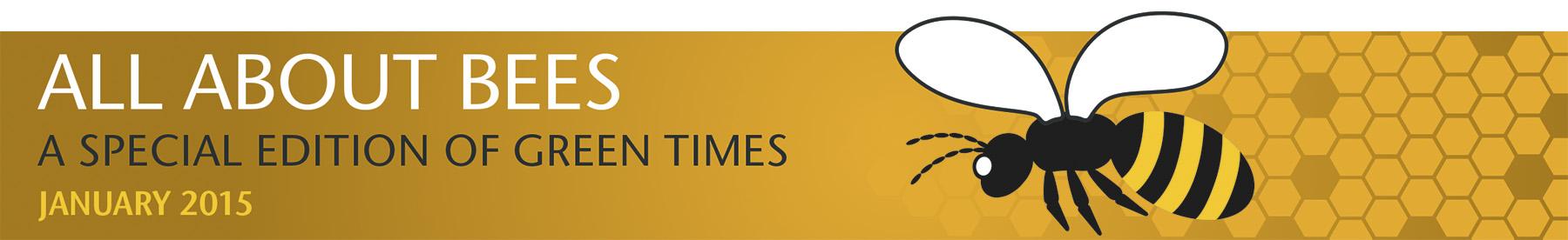 Bee Illust Banner