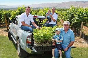 "Inland Desert Nursery, co-owned by brothers Kevin and Jerry and their father, Tom, cultivates 100 acres of clean grapevines known as ""mother blocks"" with material sourced from Washington State University's Clean Plant Center foundation vineyard. (Photo courtesy of Inland Desert Nursery.)"