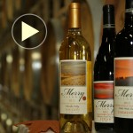 Wine webinar
